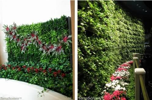 Muro_vegetal_terrascreen
