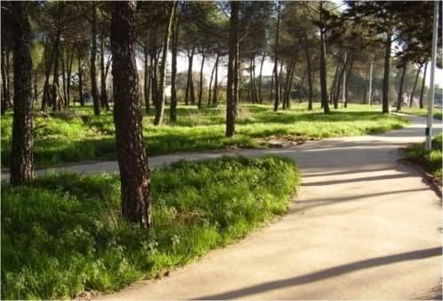 Pavimento ecológico que parece tierra