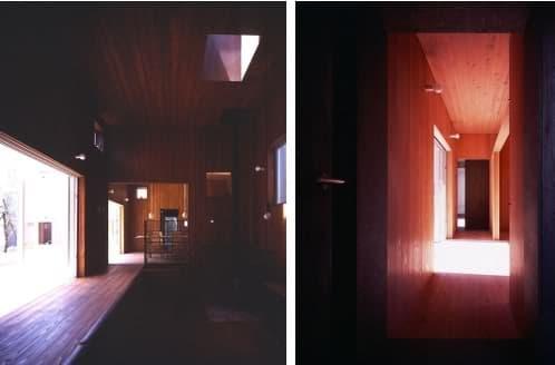 interior casa con azotea verde