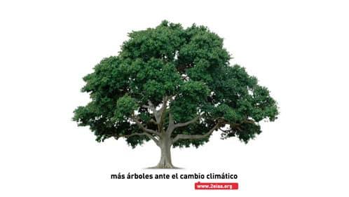 segundo_encuentro_amigos_arboles