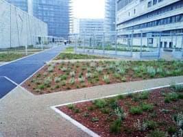 azotea-con-jardines