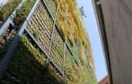 Jardín vertical de seis pisos