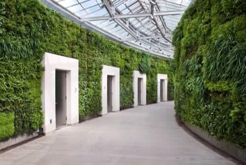 jardin-vertical-riego-automatico-vancouver