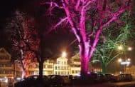 Nanopartículas de oro para hacer los árboles luminiscentes