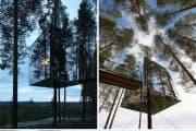 Detalles del Cubo de Cristal de TreeHotel