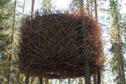 El Nido de pájaro de TreeHotel