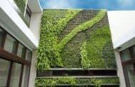 Jardines verticales de Gsky