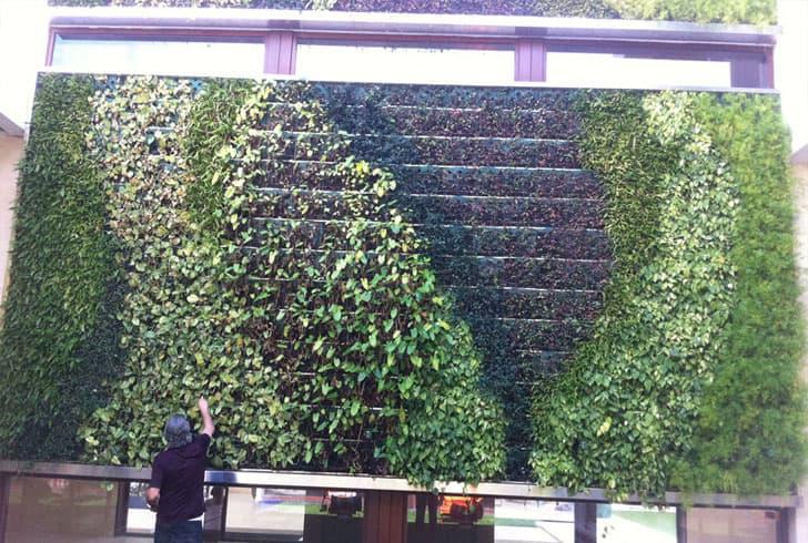 Sistemas Para Jardines Verticales De Gsky
