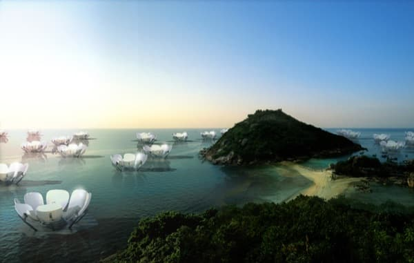 lirios flotantes producción energía solar