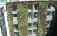 Jardines en las fachadas del hotel Mint