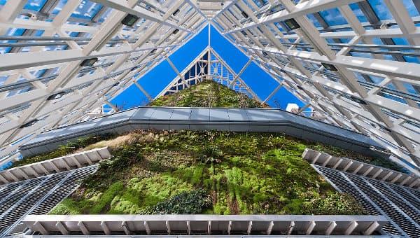 jardin-vertical-Torre_de_Cristal-Madrid