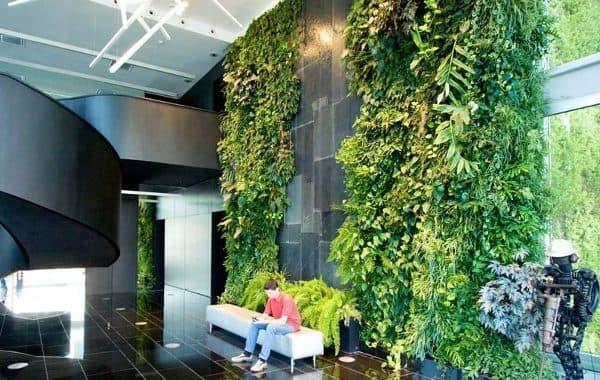 Fitorremediaci n del aire interior jardin vertical y for Jardines exteriores para oficinas