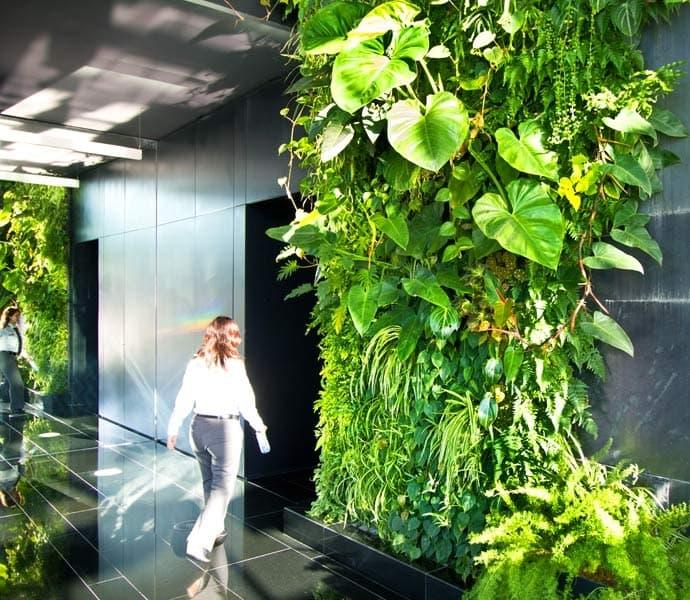 Fitorremediaci n del aire interior jardin vertical y - Jardines verticales interior ...