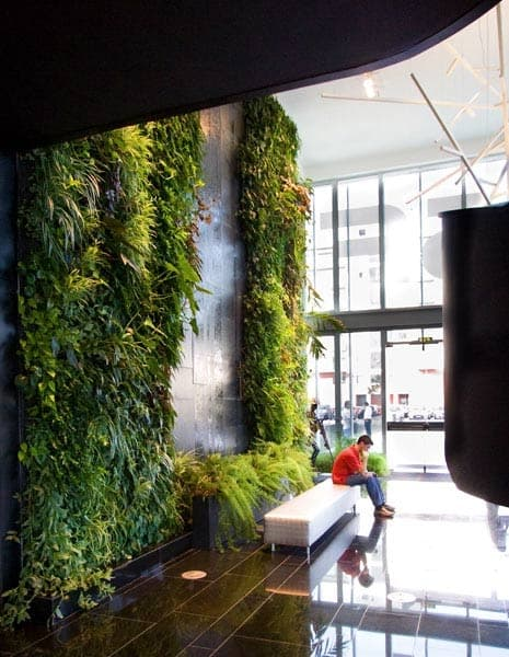 Fitorremediaci n del aire interior jardin vertical y for Jardin vertical interior casa
