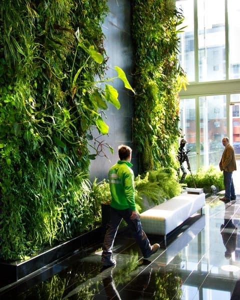Jard n vertical interior con una cascada de agua for Jardin vertical interior casa