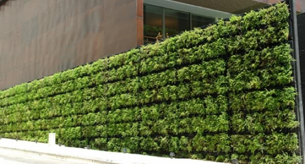Muros vegetales tournesol vgm un sistema modular for Muros verdes arquitectura