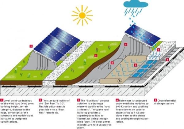 Sun-Root-Paneles-fotovoltaicos-azoteas-verdes-1