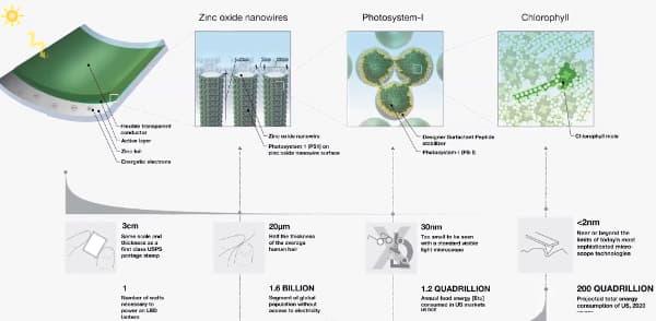 panel-fotovoltaico-fotosintesis-MIT