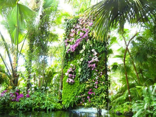 Jardines verticales dise ados por patrick blanc nueva york for Fotos de jardines verticales