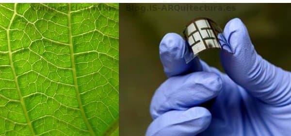 Células solares de plástico inspiradas en las hojas