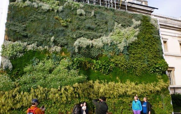 Más jardines verticales para las ciudades!