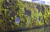 Muro verde en el Ayuntamiento de Reikiavik