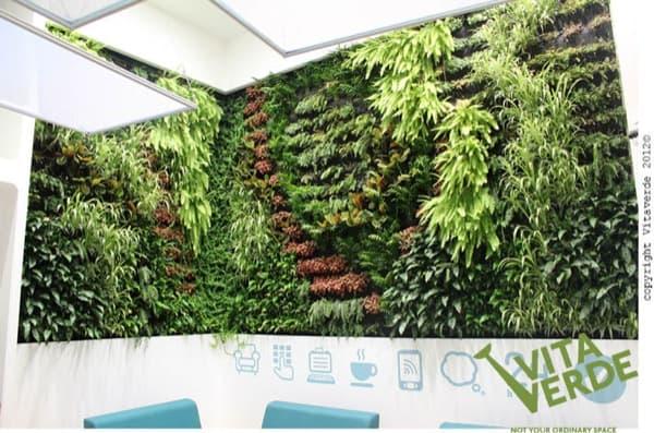Jard n vertical en el interior de unas oficinas de tesal nica for Jardin vertical materiales