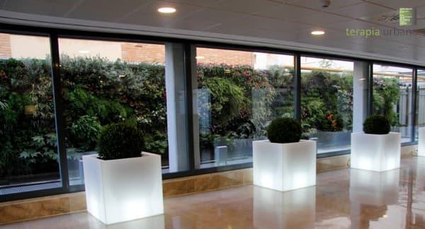jardin-vertical-Clinica-Sagrado-Corazon-Sevilla-visto desde el vestíbulo