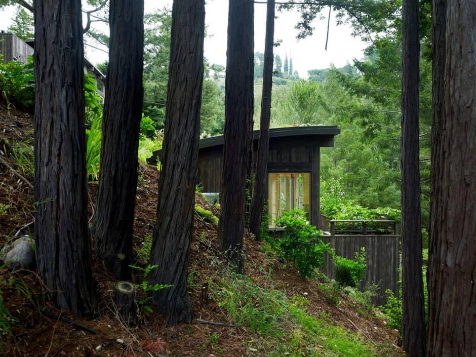 Casas De Campo En Una Ladera De Mill Valley