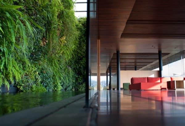 Toluca_House-interior