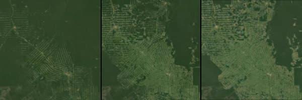 deforestacion-Amazonas