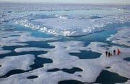 Sin hielo en el Ártico para el verano del 2050