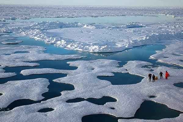 cientificos en el Artico