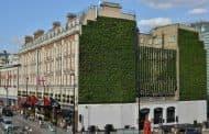 La fachada verde más grande de Londres
