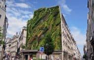 L'Oasis D'Aboukir: otro jardín vertical de Patrick Blanc