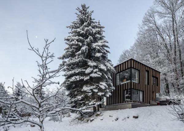 exterior-cabaña-negra-bosque-nevado