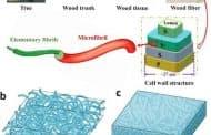 Mejorando las células solares con la madera