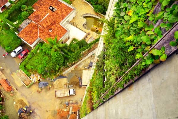 jardin-vertical-torre-Medellin-visto-desde-arriba