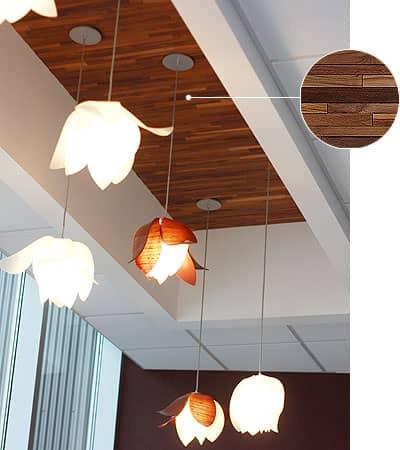techo-paneles-madera-ASI