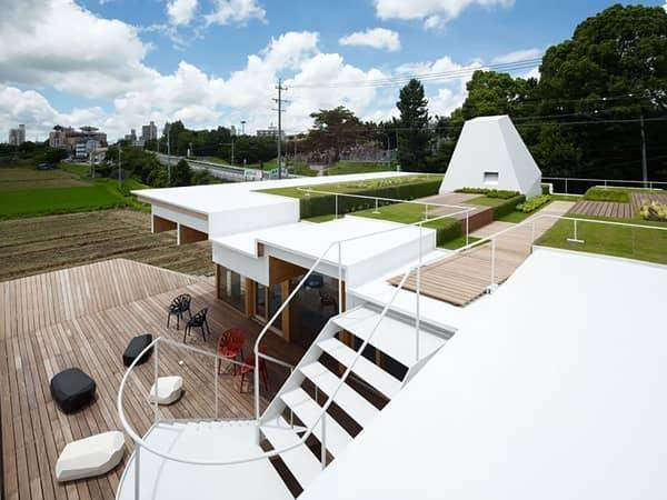 oficinas-sostenibles-DENEN-cubierta-verde