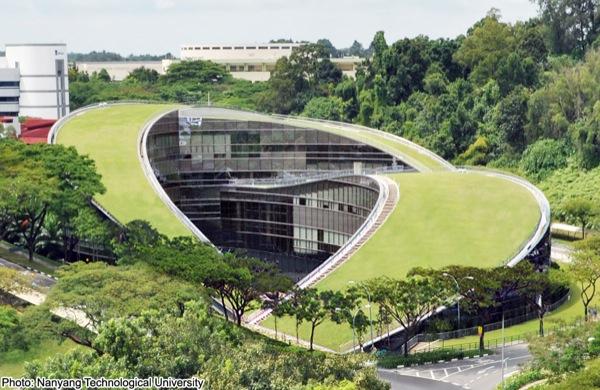 Azotea-verde-Escuela-Diseño-Nanyang-Singapur
