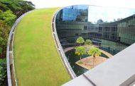 Las azoteas verdes de la Escuela de Diseño en Nanyang (Singapur)