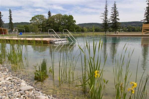 piscina natural Riehen-plantas