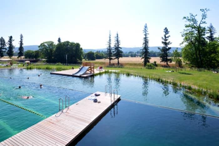 piscina natural Riehen-vista-aerea
