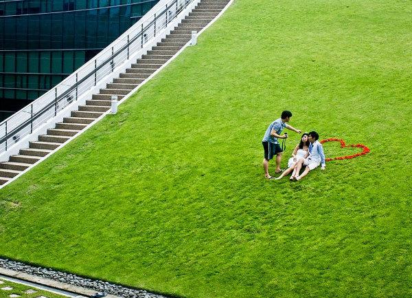 recien-casados-Azotea-verde-Escuela-Diseño-Nanyang