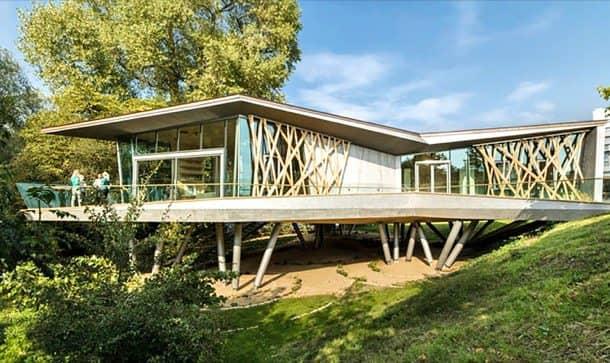 Centro-Maggie con estructura prefabricada