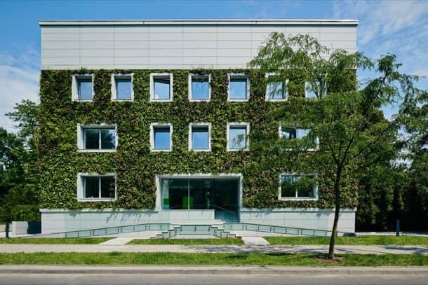 Fundacion-Ciencias-Polonia-1jardin-vertical