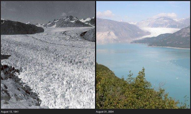 retroceso-Glaciar Muir-Alaska