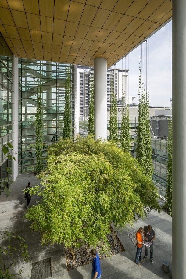 CREATE-arquitectura-sustentable