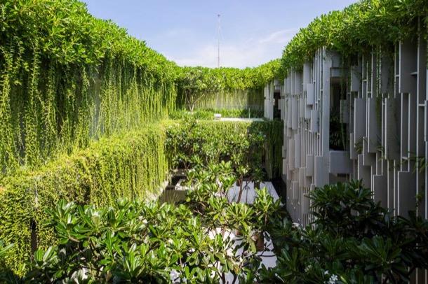Naman-Pure-Spa-patio-vegetacion